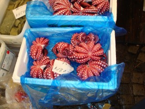 Figure 2.  Octopus for sale at the Tsukiji fish market in Tokyo, Japan (2009).