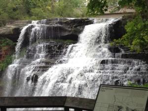 Figure.  Brandywine Falls in Cuyahoga Valley National Park (2014).