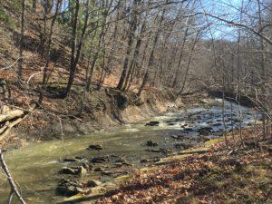 Figure 1. Euclid Creek Reservation: a Euclid Creek runs through it.